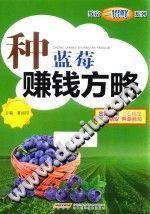 《种蓝莓赚钱方略》夏祖印【pdf】插图