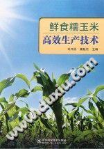 《鲜食糯玉米高效安全生产技术》刘开昌【pdf】插图