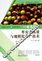 《一本书明白枣安全高效与规模化生产技术》张琼,王中堂【pdf】插图